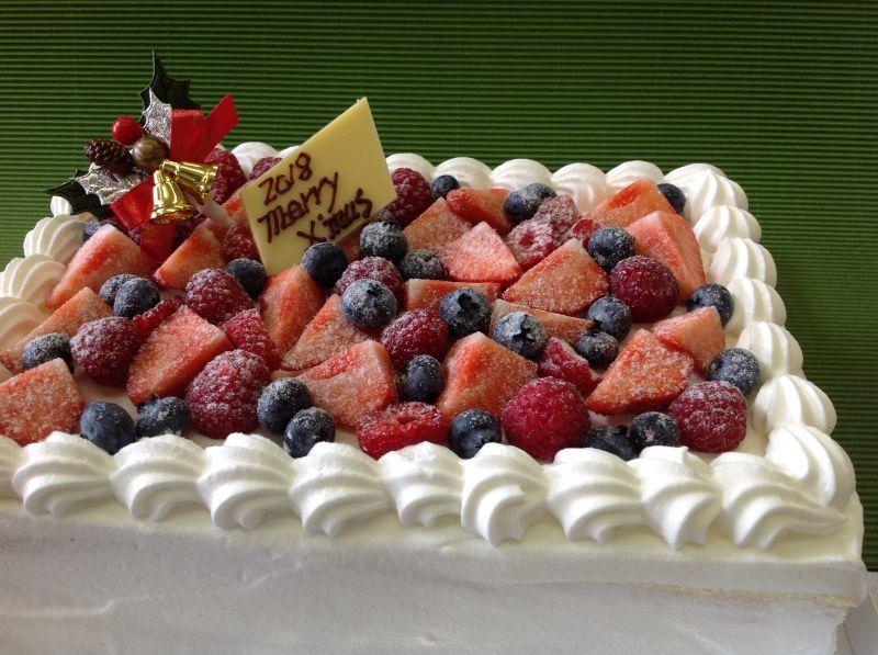 画像1: 糖質制限クリスマスパーティースクエアケーキ24cm ×18cm(発送は12月19日までです)